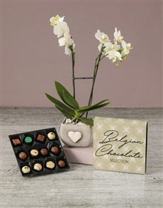 flowers: Lovely Orchid With Chocs!
