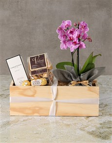 plants: Tranquil White Orchid With Chocolates!