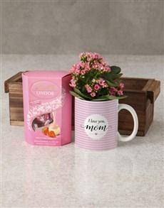 flowers: Love You Mom Kalanchoe Mug Gift!