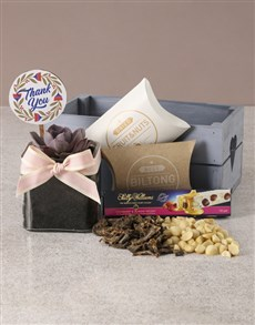 gifts: Adorable Thank You Succulent Hamper!