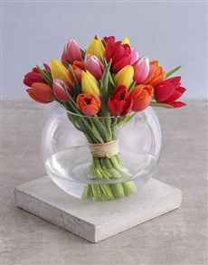 gifts: Mixed Tulips in Bubble Vase!