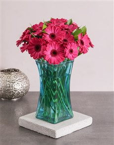 gifts: Cerise Gerbera Daisies in a Turquoise Vase!