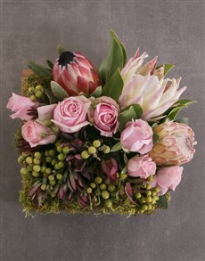 flowers: Mixed Proteas in Wooden Crate!