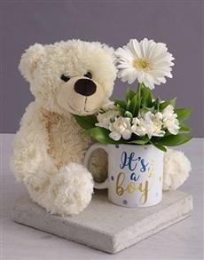 flowers: Its a Boy Daisy in a Mug!