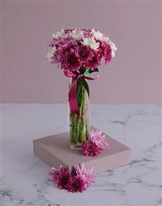 flowers: Purple Passion Array!