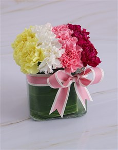 gifts: Colourful Striped Carnation Arrangement!