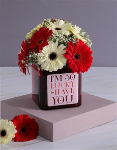 flowers: Delicate Gerbera Array!