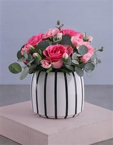 flowers: Pink Rose Delights in a Pot!