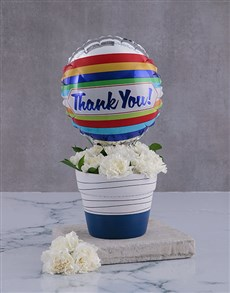 flowers: Thank You Carnations In A Pot!