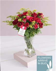 flowers: Radiant Magical Roses In A Vase!