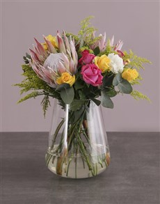 flowers: Colour Assortment Blossoms!