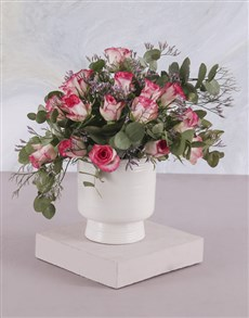 flowers: Potted Vast And Variegated Roses!