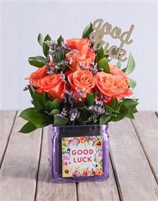 flowers: Sunset Good Luck Orange Blooms!