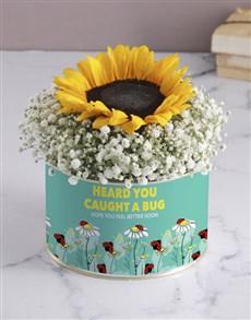 flowers: Caught A Bug Sunflower Tin!