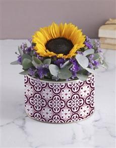 flowers: Purple Sunflower Tin!