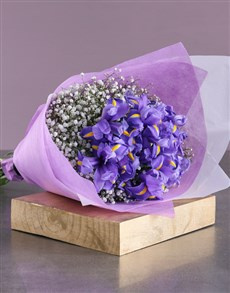 gifts: Bouquet of Blue Irises!