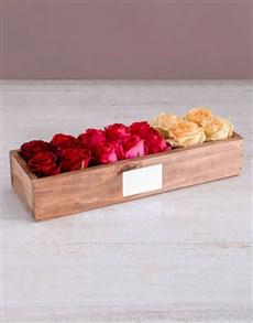 flowers: Radiant Rose Sensation!
