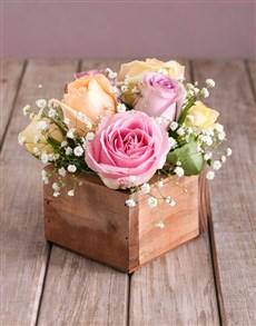 flowers: Dainty Pastel Rose Arrangement!