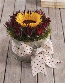 flowers: Polka Dot Sunflower Tin!