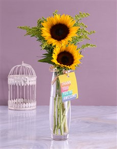 flowers: Youre Awesome Sunflower Gift!
