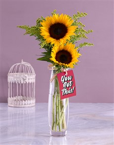 flowers: You Got This Sunflower Gift!