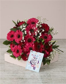 flowers: Thinking of You Mini Gerbera Bouquet!