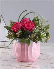 flowers: Cerise Roses In Pink Pot!