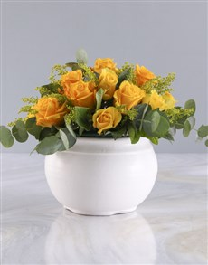 gifts: Radiant Yellow Roses in White Pot!