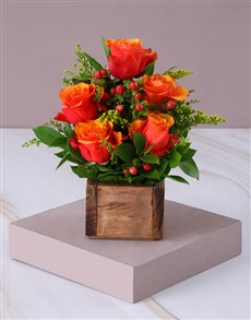flowers: Cherry Brandy Roses in Wooden Box!