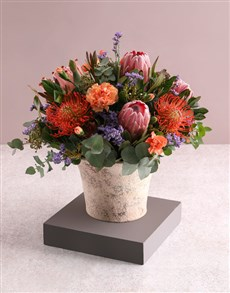 flowers: Beguiling Protea and Rose Arrangement!