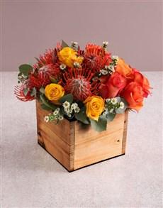 flowers: Sunrise Pincushion Display!