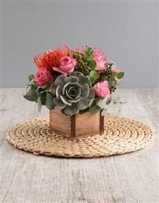 flowers: Succulent Protea Arrangement!