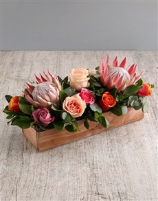 flowers: Coral King Protea and Rose Arrangement!