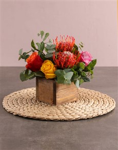 gifts: Lively Pincushion Protea and Rose Arrangement!