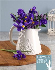 flowers: Incredible Irises In Birdie Jug!