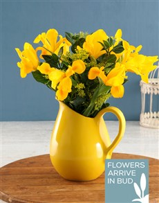 flowers: Yellow Irises In Yellow Vase!