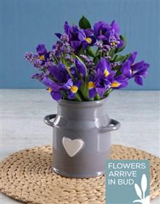 flowers: Irises In Ceramic Vase!