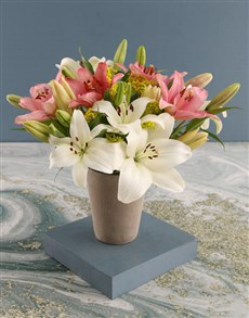 flowers: Lovely Lilies in Cement Pot!