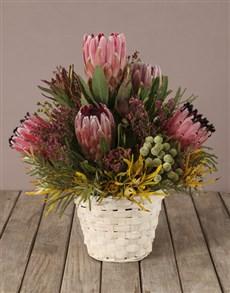flowers: Basket Of Treasures Mixed Protea Bouquet!