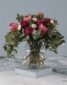 gifts: Pastel Protea Perfection!