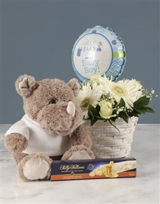 flowers: Mixed Flowers Baby Boy Basket!