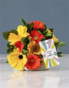 flowers: My Sunshine Mixed Gerbera Bouquet!