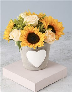 flowers: Sunflower and Rose Elegance!