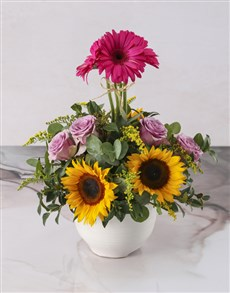 flowers: Crowning Moment Sunflower Pot!