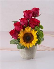 flowers: Arrangement of Sunflower and Cerise Roses!
