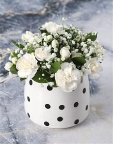 flowers: Pristine Mini White Carnations!