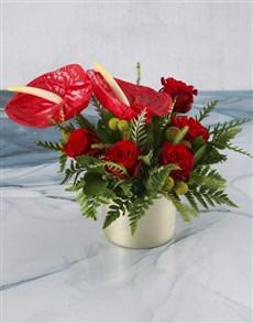 flowers: Gorgeous Anthurium And Red Rose Display!