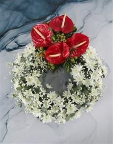 plants: Anthurium And Bloom Ring Arrangement!