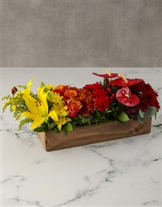 flowers: Box Of Rainbows Anthurium Arrangement!