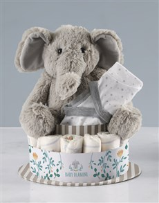 gifts: Personalised Clothes and Elephant Nappy Cake!